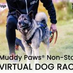 Muddy Paws® Non-Stop virtual dog race